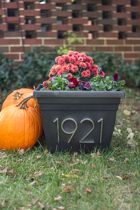 DIY House Numbers Planter | Dream Green DIY
