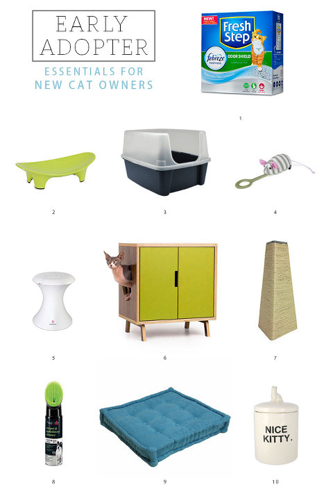 Essentials for New Cat Owners | dreamgreendiy.com + @ehow