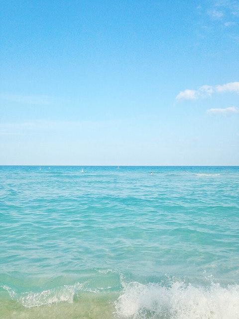 A Travel Guide To Miami, Florida | dreamgreendiy.com
