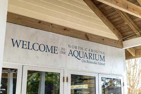 Visiting The North Carolina Aquarium On Roanoke Island