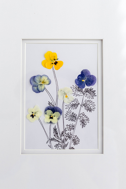 Diy Pressed Flowers Art Print Dream Green Diy