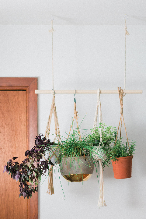 https://cdn.dreamgreendiy.com/wp-content/uploads/2018/08/14-49043-post/Hunker-DIY-Hanging-Plant-Herb-Garden-RESHOOT-3(pp_w480_h719).jpg