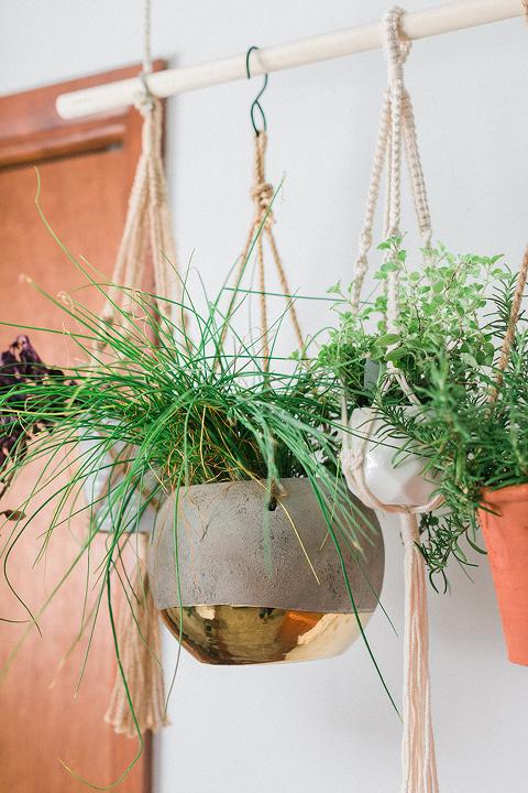 DIY Hanging Herb Plant Garden
