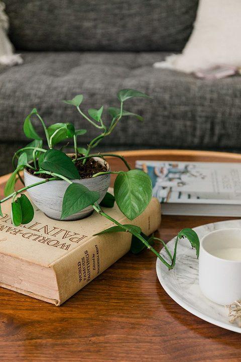 A Sneak Peek Of Our Revamped Living Room   dreamgreendiy.com + @article #ad #svensofa #ourarticle