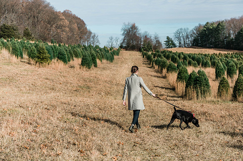 Family trip to the Christmas tree farm