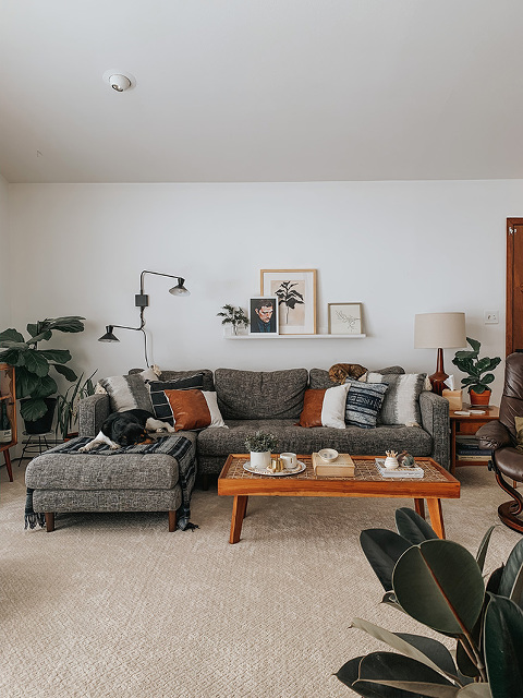 Mid-century living space