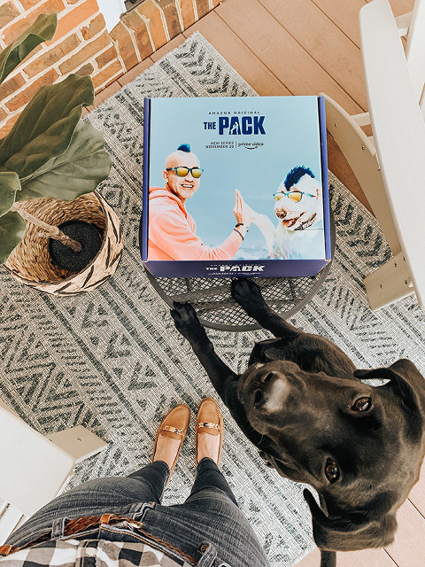 At-Home Playtime Tips For Your Puppy | dreamgreendiy.com + Amazon Prime Video #ad #PackedWeekend #ThePackonPrime