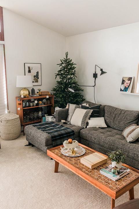 https://cdn.dreamgreendiy.com/wp-content/uploads/2020/12/08-56826-post/Tuesday-Morning-DGD-Christmas-1(pp_w480_h720).jpg